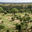 Landscap in Africa, Tanzania, Africa
