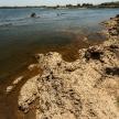 Zambezi River - Namibia