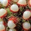 Rambutan Fruit, Thailand