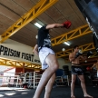 THAILAND - FEBUARY 11 2014: International fighters take part in